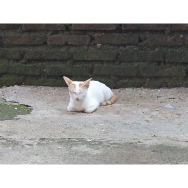 Siti Maghfirah